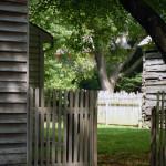 Cabins & Fences